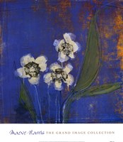 Orchid Study I Fine-Art Print