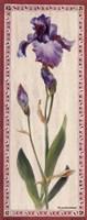 Iris Panel I Fine-Art Print