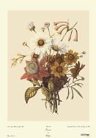 Seasons Fine-Art Print