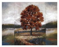 Evening Oak Fine-Art Print