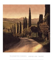 Country Lane, Tuscany Fine-Art Print