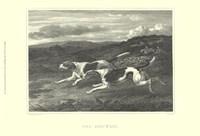 Foxhounds Fine-Art Print
