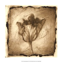 Floral Impression II Giclee