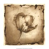 Floral Impression IV Giclee