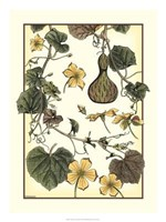Arts And Crafts Gourd Giclee