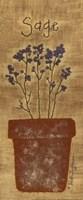 Stitched Sage Fine-Art Print