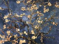 Blossoming Almond Tree, Saint-Remy, c.1890 Fine-Art Print