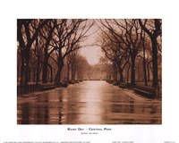 Rainy Day - Central Park Fine-Art Print