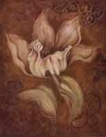 Study In Ecru II Fine-Art Print