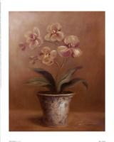 Olivia's Flowers I Fine-Art Print