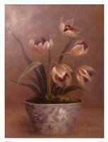 Olivia's Flowers III Fine-Art Print