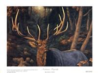 Autumn Majesty Fine-Art Print