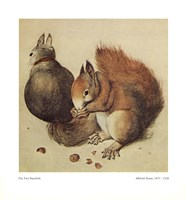 Squirrels, c.1512 Fine-Art Print