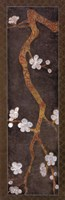 Cherry Blossom Branch I Fine-Art Print
