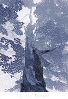 Blue Lace I Fine-Art Print