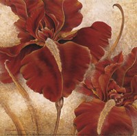 Red Iris Fine-Art Print