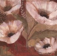 Amapola Blanca III Fine-Art Print