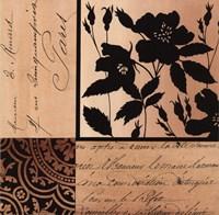 Noir Et Creme II Fine-Art Print