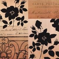 Noir Et Creme IV Fine-Art Print