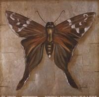 Brown Butterfly Fine-Art Print