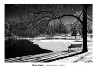 Heritage Pond In Winter Fine-Art Print