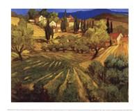 Mount Ventoux Fine-Art Print