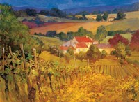 Vineyard Hill Fine-Art Print