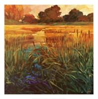 Golden Creek Fine-Art Print