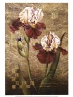 Grand Irises Fine-Art Print
