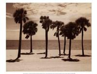 Key Biscayne II Fine-Art Print