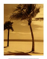 Palm Beach I Fine-Art Print