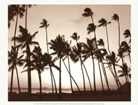 Platinum Palms I Fine-Art Print