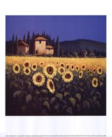 Golden Warmth II Fine-Art Print