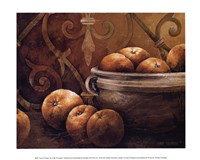 Tuscan Orange Fine-Art Print