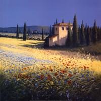 Summer Villa Fine-Art Print