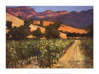 Wine Country Fine-Art Print