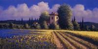 Summer Fields II Fine-Art Print