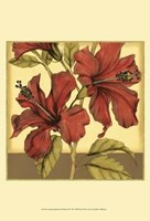 Cropped Sophisticated Hibiscus II Fine-Art Print