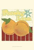 Peachy Keen (Pp) Fine-Art Print