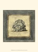 Mini Exotic Coral V Fine-Art Print