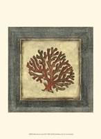 Mini Exotic Coral VIII Fine-Art Print