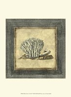 Mini Exotic Coral IX Fine-Art Print
