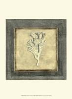 Mini Exotic Coral X Fine-Art Print