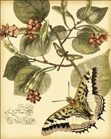 Mini Whimsical Butterflies I Fine-Art Print