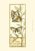 Mini Tandem Butterflies IV Fine-Art Print