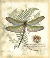 Mini Regal Dragonfly I Fine-Art Print