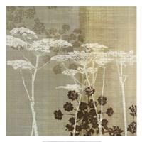 Lace I Fine-Art Print