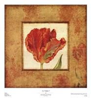 Les Tulipes I Fine-Art Print