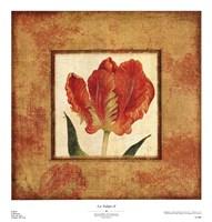 Les Tulipes II Fine-Art Print