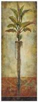 Echoes Of Cadiz II Fine-Art Print